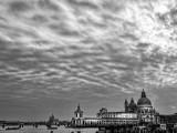Sky Vista - Venice