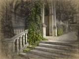 Steps and Arch