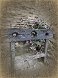 The  stocks at Ypres Tower