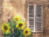 Sunflowers & shutters