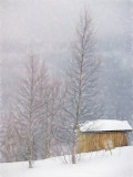 Christmas snow - Norway