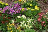 En attendant le retour du printemps - Spring is still far away !