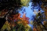 L'automne, une belle saison - Autumn can be so nice !