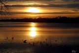 Coucher de soleil de novembre - November sunset