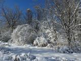 Féerie hivernale - Winter extravaganza