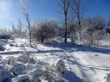 Féerie hivernale 2 - Winter extravaganza 2