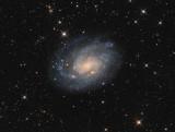 NGC300 in Sculptor