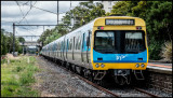 14th January 2015 - Melbourne, Williamstown