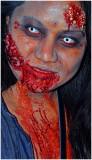 TO_Zombie_Walk_2014bb.jpg