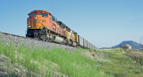 BNSF south bound coal load.