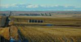 Alberta grain elevators.
