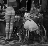 04 Legs.jpg