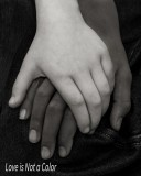9.Love Is Not a Color.jpg