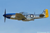 352nd Fighter Group Tribute
