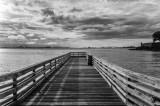 Harbor Deck