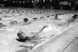 swimpracticeMMweb.jpg