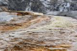 pStryker-yellowstone-mammoth-hot-springs_0426.jpg