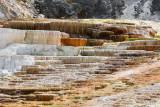 pStryker-yellowstone-mammoth-hot-springs_0429.jpg