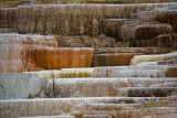 pStryker-yellowstone-mammoth-springs_0458.jpg