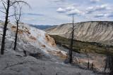 pStryker-yellowstone-mammoth-springs_0515.jpg