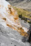 pStryker-yellowstone-mammoth-springs_0524.jpg