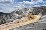 pStryker-yellowstone-mammoth-springs_0538.jpg