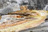 pStryker-yellowstone-mammoth-springs_0540.jpg