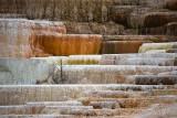 pStryker-yellowstone-mammoth-springs-closeup_0455.jpg