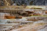 pStryker-yellowstone-mammoth-springs-closeup_0456.jpg