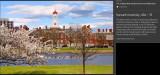 31_Harvard.jpg