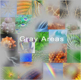 Gray Areas - Gray Aliens, Human Beings and the Earth