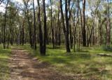 Hawkesbury Walks