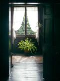 Interior, Elizabeth Farm