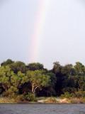 0638: African rainbow