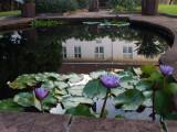 0685: Courtyard, Victoria Falls Hotel
