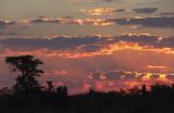 2154: African sunset