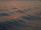 2331: Reflected sunset