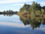Upstream from Windsor – 2