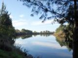 Upstream from Windsor – 3