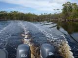 Melaleuca Creek, Tasmania