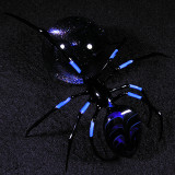 Arachmib 5  Size: 1.14  Price: SOLD