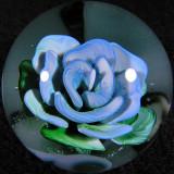 #27: Infinite Bloom Size: 1.37 Price: $65
