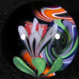 #181: Planet Kobuki Size: 1.28 Price: $600