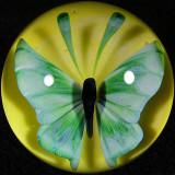 #18: Sunshine Flutter Size: 1.58 Price: $250
