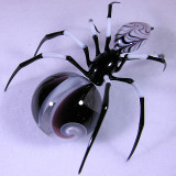 Arachmib 10 Size: 0.98 Price: SOLD
