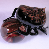 Golden Dung Beetle Size: 1.11  Price: SOLD