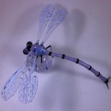 #15: DragonFlyBall 1 Size: 1.10  Price: $360