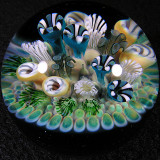 Reeferville Size: 1.74 Price: SOLD