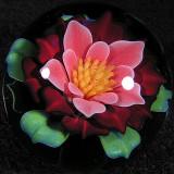 Popular Petals  Size: 1.35  Price: SOLD