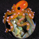 Octo-cave Size: 1.31  Price: SOLD